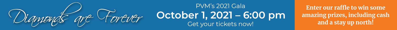 PVM Foundation Gala 2020
